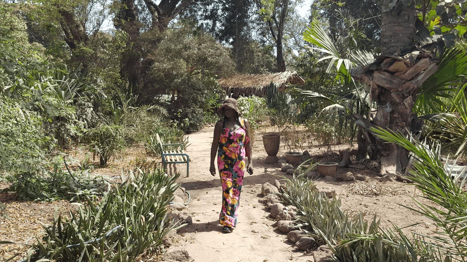 Bakau's Botanical Garden