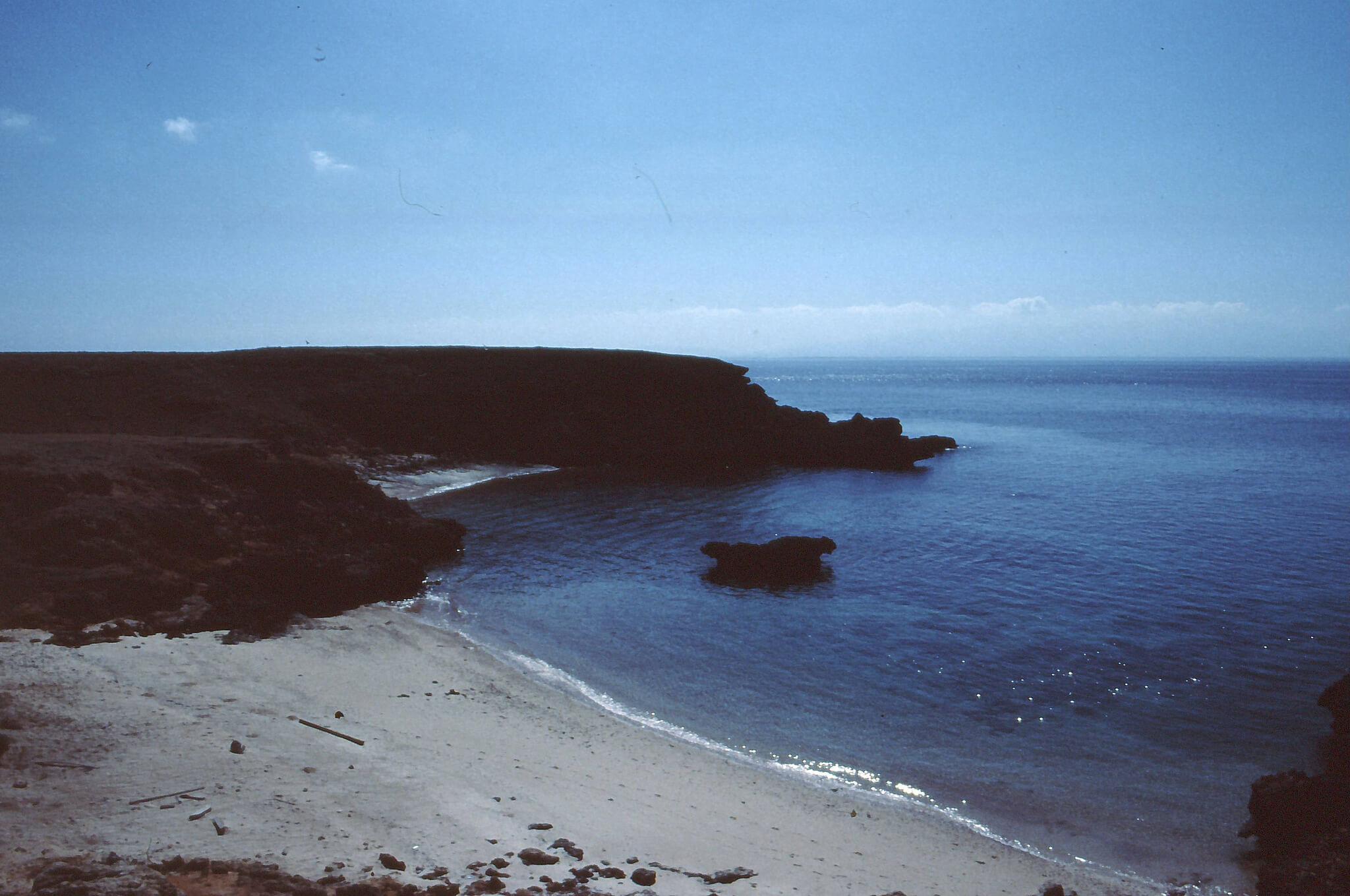 Daymaniyat Island - одно из лучших мест для дайвинга